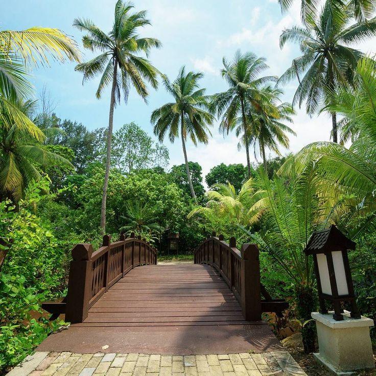 Road to paradise. One way. @tanjongjararesort
