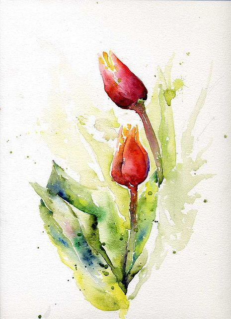 tulips watercolor | Pinterest | Red tulips, Watercolor and Paintings
