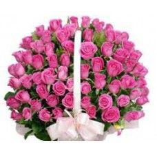 Stunning Pink Beauty