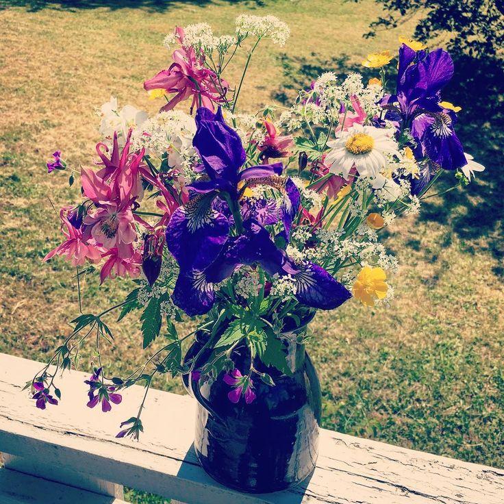 🌺🌻🌹🌷🌼🌸💐  #foto #flowers #inspo #blog