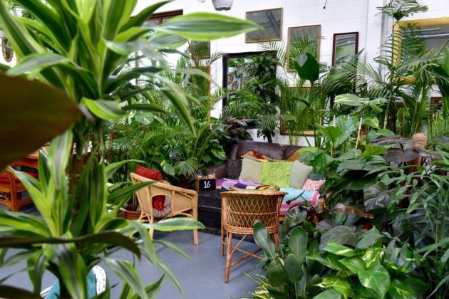 Eat Suffolk Urban Jungle Plant Nursery And Cafe Beccles Picture Nick Butcher Plant Nursery Conservatory Garden Garden Room