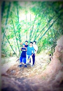lorong bambu