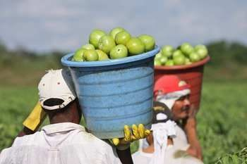 On Labor Day, Let's Celebrate Farm and Food System Workers...