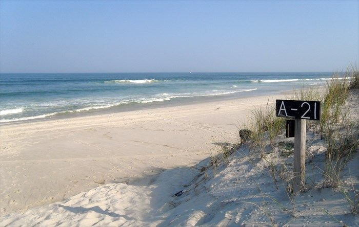 Island Beach State Park ~ located between Barnegat Inlet on the south side and South Seaside Park on the north side.