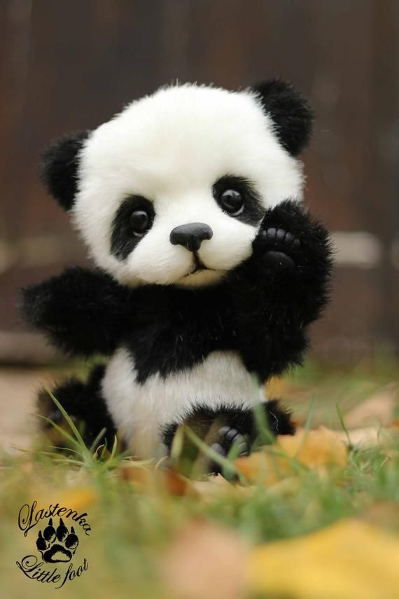 Panda bear Hugo handmade plush collectible artist stuffed teddy bear OOAK toy cute panda cub realistic teddy bear beas gift (made to order)