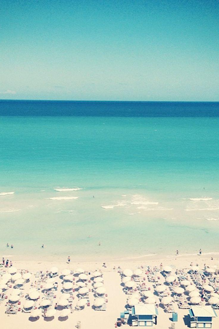 Laura Bailey's Guide to Miami