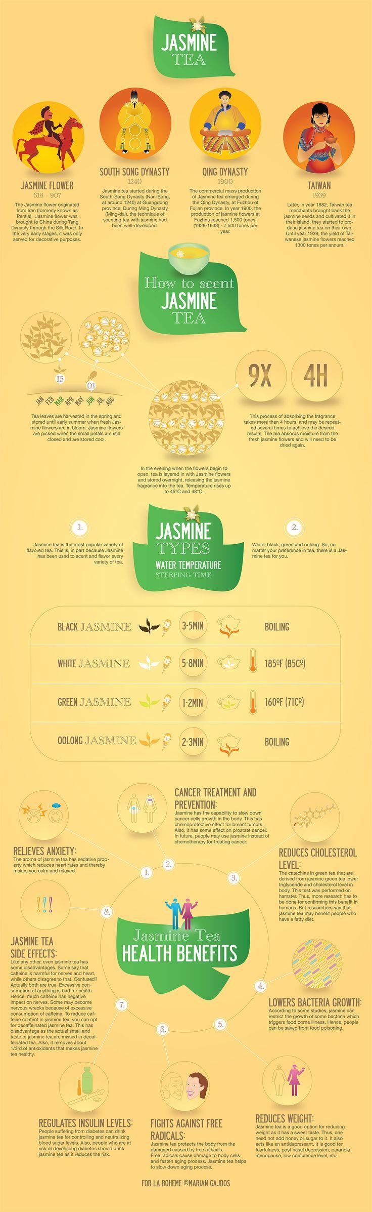 Infographics on Jasmine tea, history of Jasmine tea, health benefits, How to prepare jasmine tea.