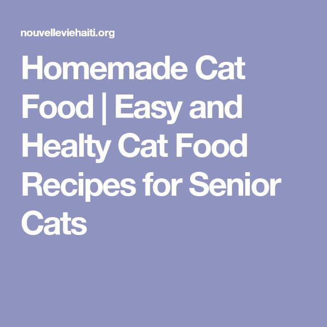 Homemade Cat Food | Easy and Healty Cat Food Recipes for Senior Cats