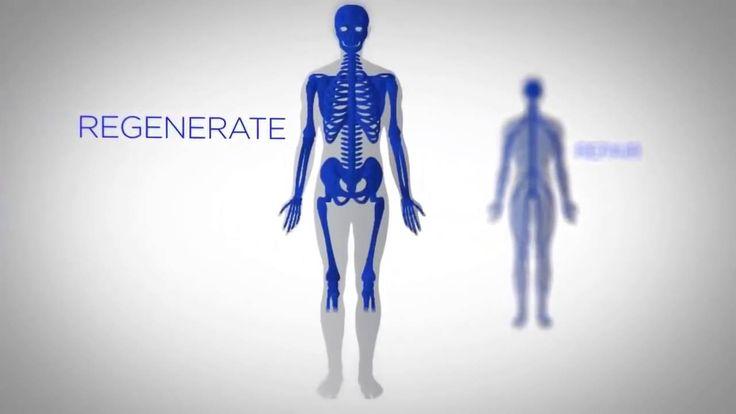 JEUNESSE - Dott  Nathan Newman e la tecnologia delle cellule staminali -...
