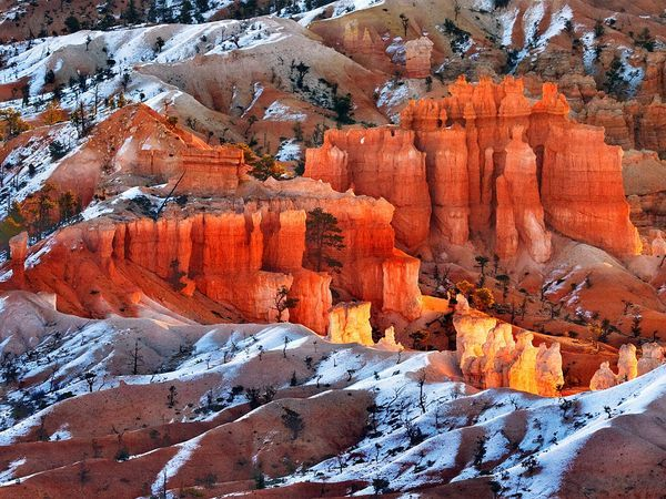 Bryce Canyon National Park in UTBrycecanyon, States Parks, Sunris Point, National Geographic, National Parks Utah, National Park Utah, Bryce Canyon, Oleg Slyusarchuk, Canyon National