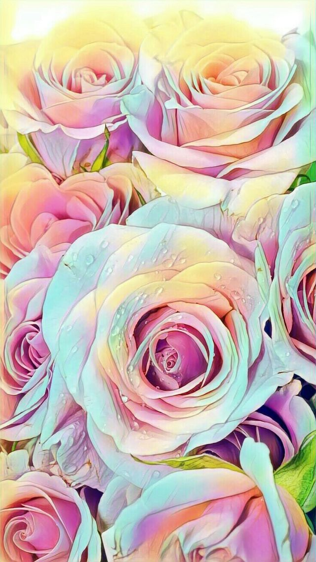 Wallpaper Iphone Flower Background Wallpaper Flower Wallpaper Rose Wallpaper
