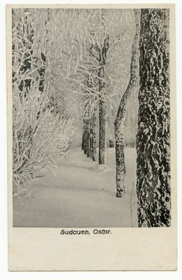 Sudauen, Winterlandschaft