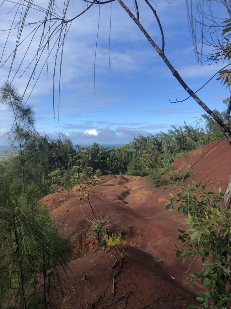 Laie Oahu outdoors nature sky weather hiking camping