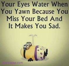 Funny #Minions #Quotes About Beds... - Beds, Funny, funny minion quotes, Minion Quote Of The Day, Minions, Quotes - Minion-Quotes.com