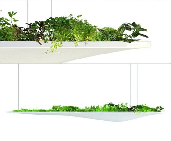 –Like the organic shape of Florent Coirier's Ukiyoe (floating garden), might be a good alternative hanging system for a window farm. Also, great lighting at florentcoirier.com