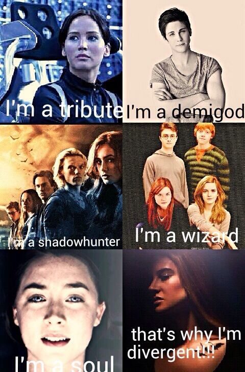 The hunger games, Percy Jackson, the moral instruments, Harry potter, The host, and divergent.