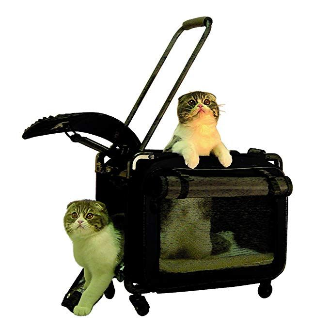 Tutto Small Pet On Wheels Stroller 17 Inch Black Review Cat Carrier Small Pets Dog Training Collar