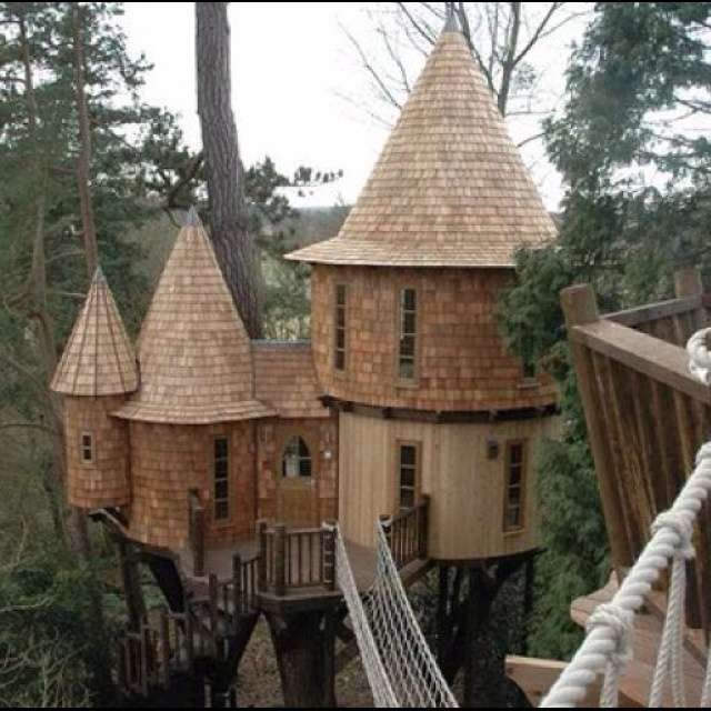 Future Tree Houses 93 best tree house images on pinterest | architecture, live and