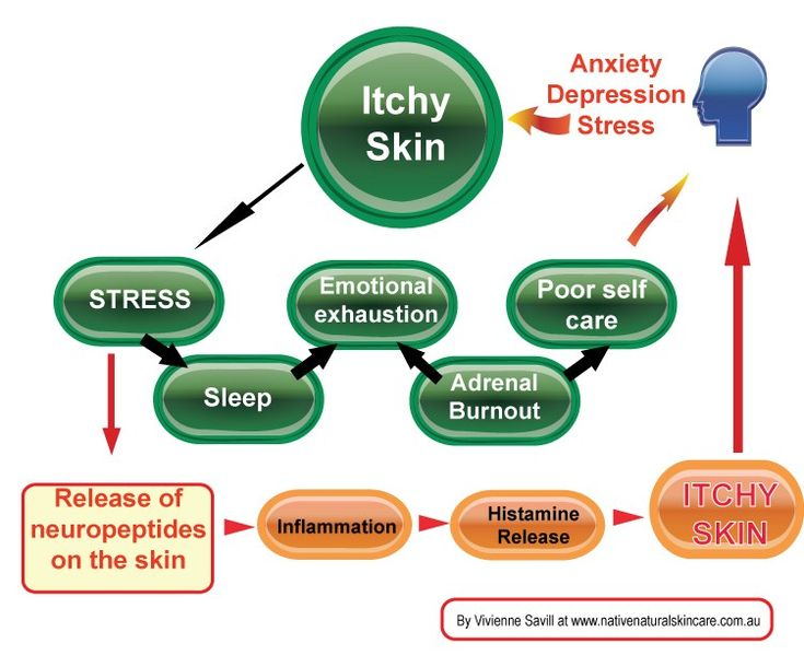 The effects of stress on the skin can be traumatic causing a cycle of itch and stress. By Vivienne Savill at www.nativenaturalskincare.com.au