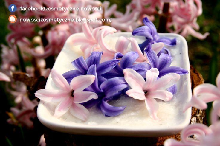 Każdy z nas chciałby zatrzymać zapachy kwiatów na dłużej zwłaszcza tych wiosennych jak fiołek wonnym, narcyz, hiacynt. Intensywnie pachnące kwiaty szybko przekwitają i nigdy nie mogę nacieszyć się wonią tych kwiatów. Jednym z moich ulubionych zapachów jest hiacynt. Postanowiłam, więc zatrzymać ten zapach na dłużej w postaci pomady zapachowej metodą enefleurage'u. Zapraszam na post http://nowoscikosmetyczne.blogspot.com/