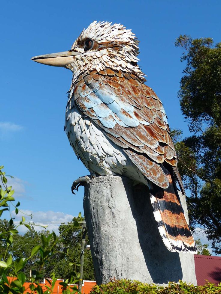 Big Kookaburra, Australia