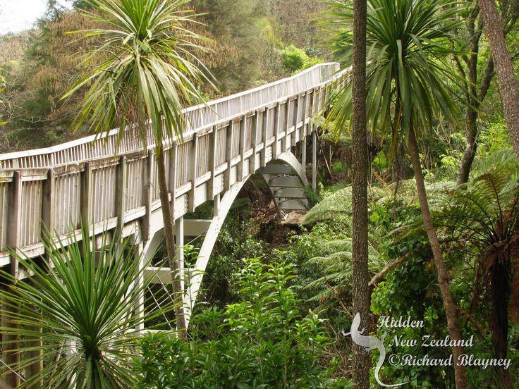 Bridge on the path along the Waikato River in Hammond Park, Hamilton East.