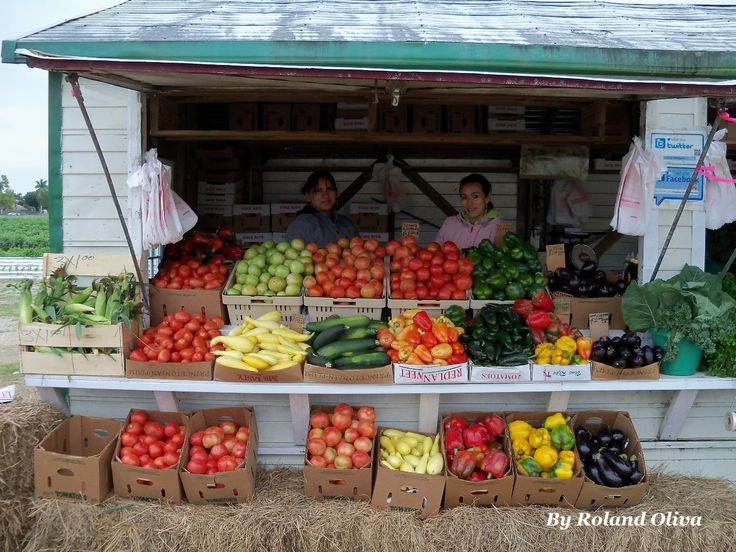 fruit stand fruit and veggie diet