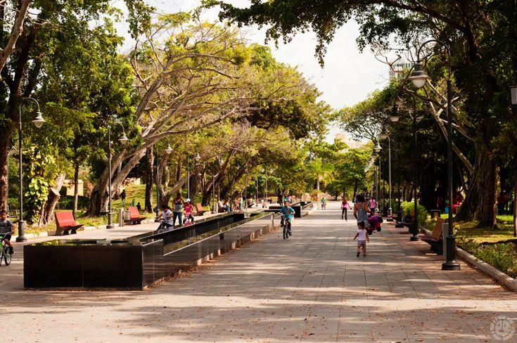 El Parque Luis Muñoz Rivera fue diseñado por Bennet, Parsons & Frost de Chicago en 1924.  Fue restaurado en los años 1990 y 2003.  Actualmente sirve como parque recreacional en el área de ...