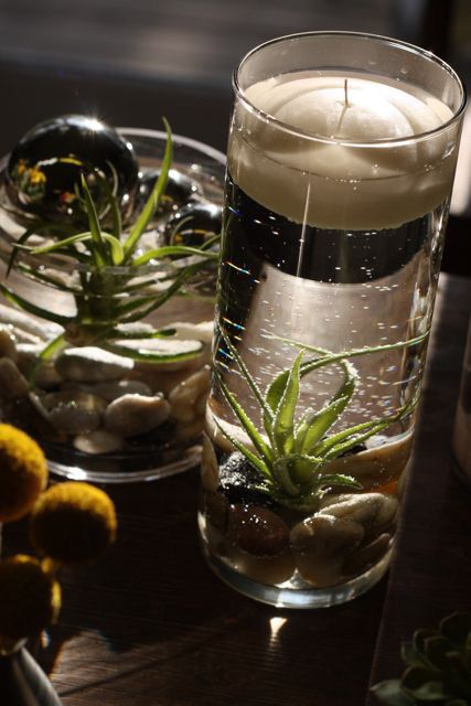 77 best floating flowers centerpieces images on pinterest for Distilled water for fish