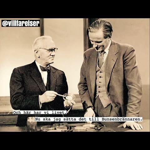 #kemi #fysik #livet #hat #mord #bunsenbrännare #villfarelser #humor #ironi #kul #konst #poesi #skoj #fånigt #löjligt #text #foto #fotografi