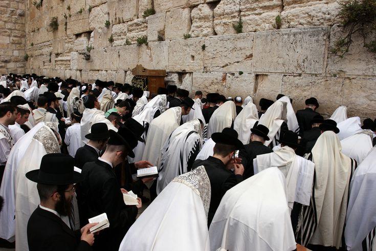 Nunca entendí por qué tantos niños en mi escuela nos odiaban tanto a los Judíos... Mi padre solía decirme que el pueblo judío eran chivos expiatorios del mundo. Por eso siempre me preguntaba....
