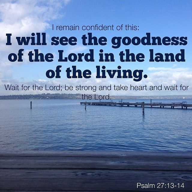 Psalm 27:13-14 | Scripture Focus | Pinterest | Psalm 27 ...