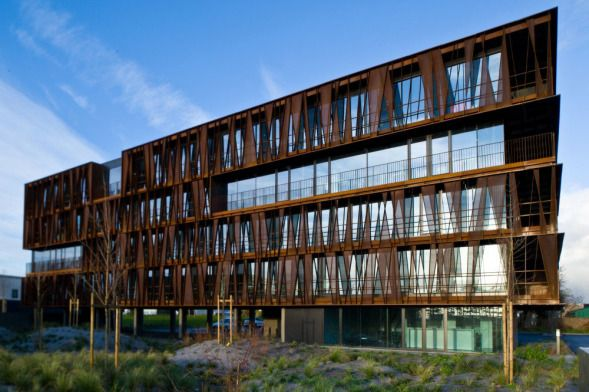 Estructura de acero como filtro for Estructura arquitectura