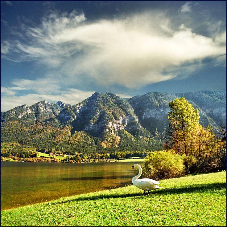 Wolfgangsee, Upper Austria    The picturesque Salzkammergut lake district in Austria  http://www.travelandtransitions.com/austria-travel/