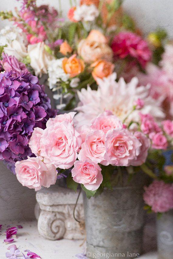 Flower Photography   The Flower Market French von GeorgiannaLane, $30.00