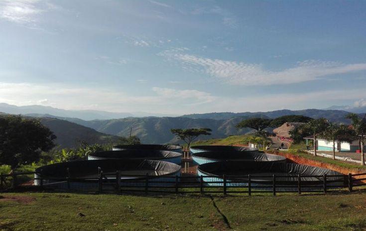 Proyecto desarrollado para una finca ganadera en el departamento de Antioquia.