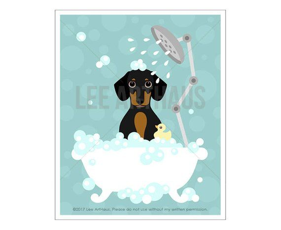 18d Dog Print Dachshund Dotson Dog In Bubble Bath Wall Art Etsy Dachshund Wall Art Dog Wall Art Dachshund Print