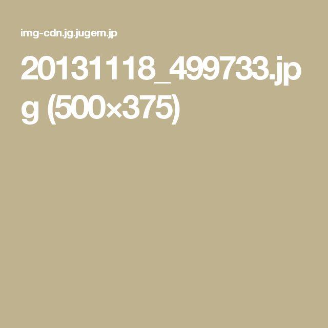 20131118_499733.jpg (500×375)