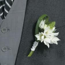 Google Image Result for http://www.fiftyflowers.com/site_files/FiftyFlowers/Image/Product/Star_of_Bethlehem_Boutonniere_and_Corsage_Wedding_...