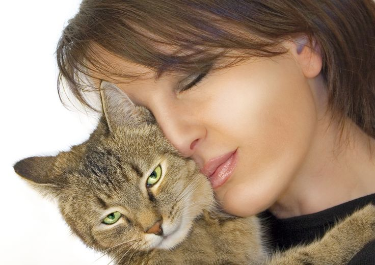 Scientists Have Finally Discovered a Cure for Cat Allergies - Biology, Medicine, Microbiology