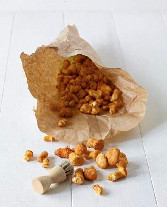 Tipps für den perfekten Pilzputz: Pfifferlinge schmecken in vielen Gerichten köstlich, doch die kleinen Gelböhrchen müssen vorher gut geputzt werden - alle Tipps und Tricks rund um den Pfifferling findet ihr in unserer Fotostrecke.