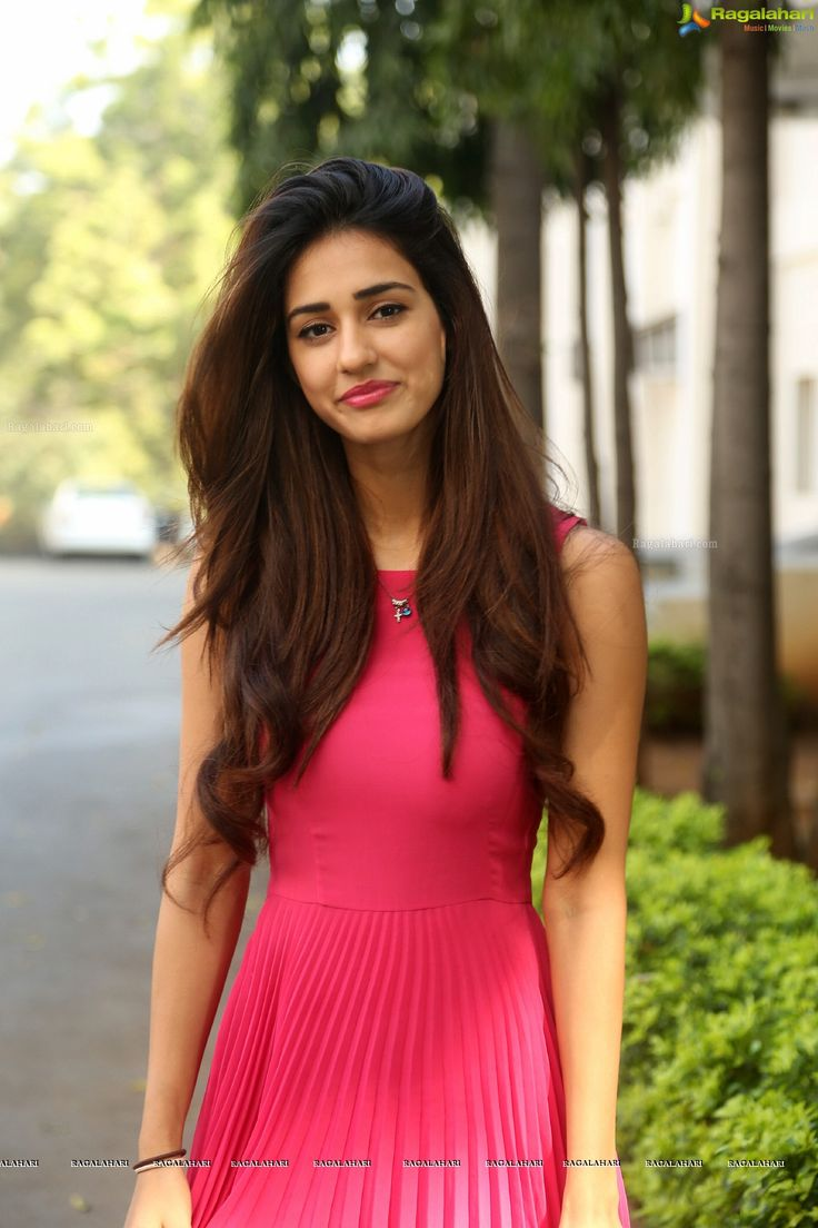 Disha Patani High Resolution Photos - Image 3