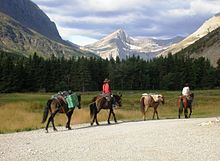Continental Divide Trail - Wikipedia, the free encyclopedia