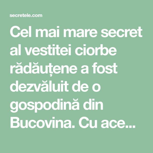 Cel mai mare secret al vestitei ciorbe rădăuțene a fost dezvăluit de o gospodină din Bucovina. Cu această rețetă nu vei da greș vreodată! - Secretele.com