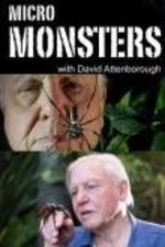 Watch Micro Monsters 3D with David Attenborough online (TV Show) - on PrimeWire | LetMeWatchThis | Formerly 1Channel
