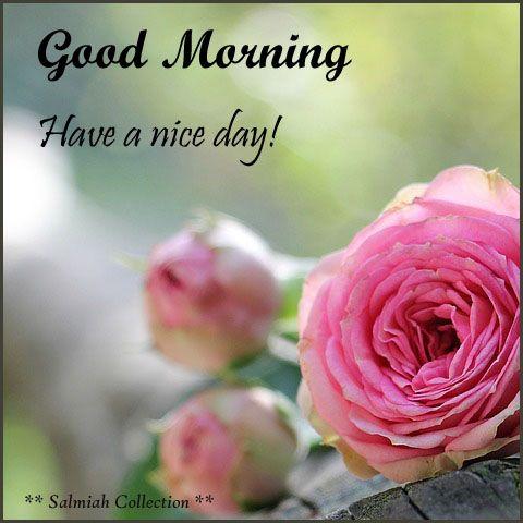 Good Morning Wish 36