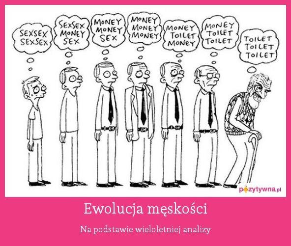 Ewolucja męskości : Na podstawie wieloletniej analizy