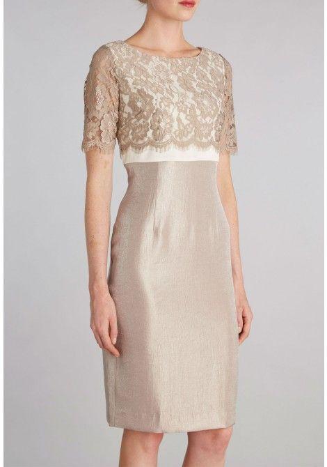 Gina Bacconi Scallop Flower Lace and Shimmer Dress