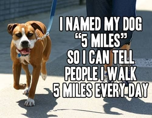 """My Dog's Name is """"5 Miles"""""""