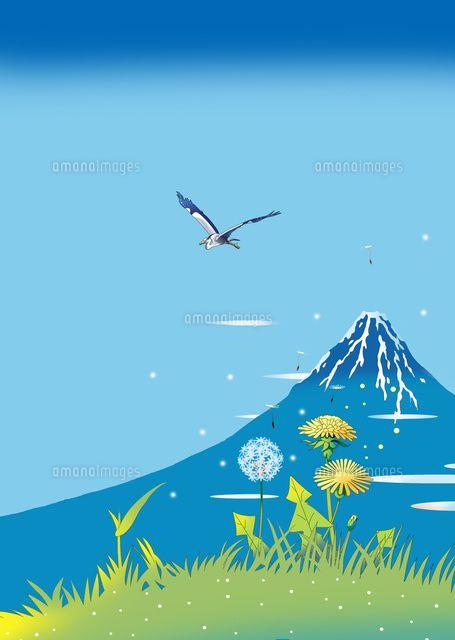 富士山 蒲公英 風景イラスト 浮世絵 北斎 青富士